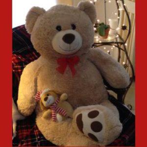 2016-bear